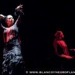 Flamencomielylimon Teatro S. Marco TN 19.12.12-56