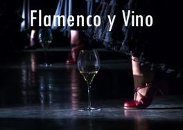 FOTO INIZIO flamenco e vino